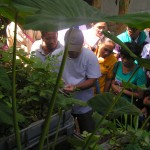 explaining aquaponics to farmers of KinderHome Foundation