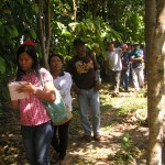 The role of trees in permaculture design